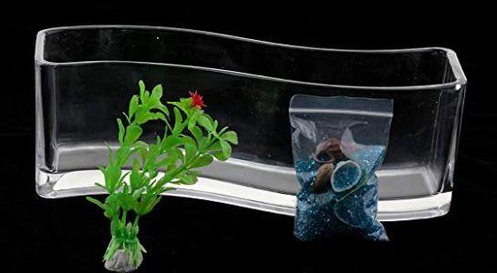 aquarium for the gold fish