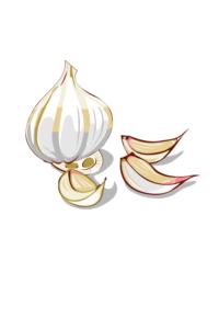 power of garlic