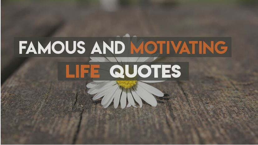 quotes will motivate you in successful